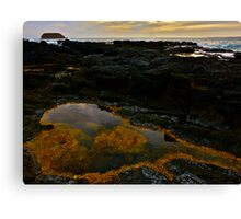 Salt Stained Summerlands Volcanic Pools Canvas Print