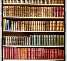 Bookcase by derek blackham