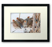 The Partridge Family Framed Print