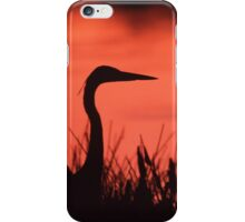 Heron Sunset iPhone Case/Skin