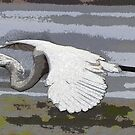 Heron in flight in watercolor by FSULADY
