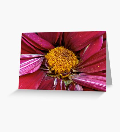 Flower - At the center of it all Greeting Card