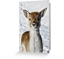 Carrot? Not Me! Greeting Card