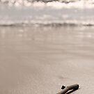 Swept Ashore  by HollyRuthven
