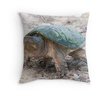 A Momentary Glace - Snapping Turtle Throw Pillow