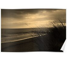 Grasses and Groynes Poster