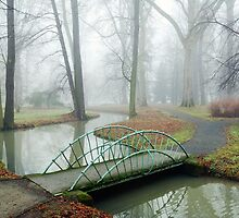 Small Bridge in Misty Park by balounm