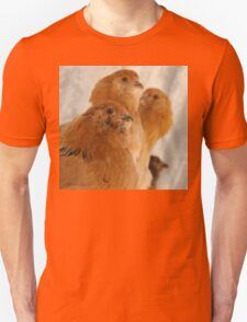 Easter Eggers on their perch T-Shirt