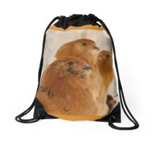 Easter Eggers on their perch Drawstring Bag
