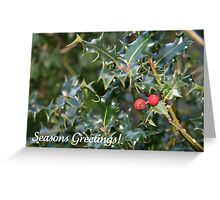 Seasons Greetings (Holly) Greeting Card