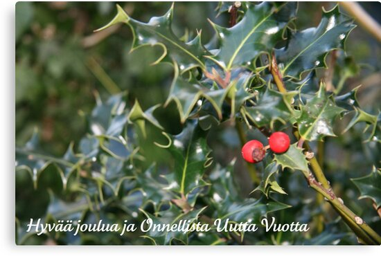 Hyvää joulua - Finnish Christmas Card (Holly) by JoAndCoCards