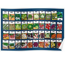 Vegetable seeds pattern Poster