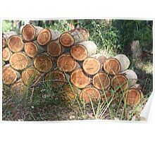 A Neighbour's Wood Pile Poster