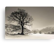 Langdale Tree Canvas Print