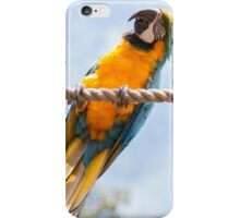 Blink Of Colour iPhone Case/Skin