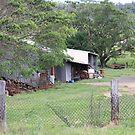 Farm Yard Near Laidley by aussiebushstick