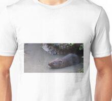 Shyness Unisex T-Shirt