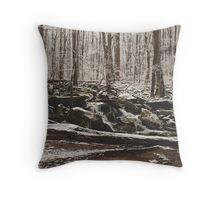 Ice Cold Stream Throw Pillow