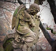 Old Gray Cemetery-1860 by FoxFire Images