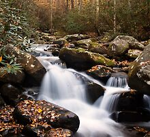 Roaring Fork Waterfall at Autumn by andrewsound95