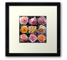 Rose Beauties Collage Framed Print