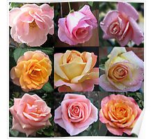 Rose Beauties Collage Poster