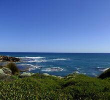 Blairgowrie Surf by tessabella