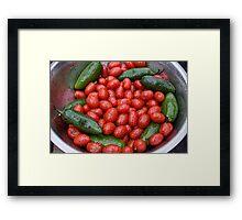 Colorful Tomato Pepper Bowl Framed Print