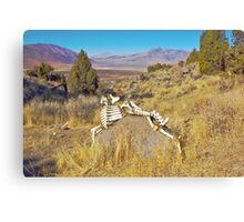 Bone Art Canvas Print