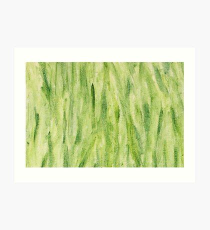 Impression Seaweed Art Print