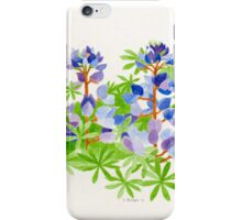 The color of Point Fermin    iPhone Case/Skin