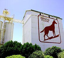 Dingo Flour by David  Pemberton