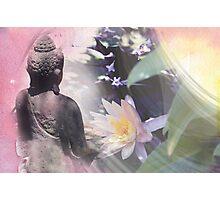 Garden Meditations... Photographic Print