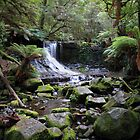 Horseshoe Falls, Mt Field National Park - Tasmania by clickedbynic