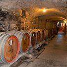 Sevenhill Cellars, Clare Valley, South Australia by SusanAdey