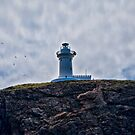 """ Lighthouses are lonely figures"" (Tianne Albrow 2012) by Normf"