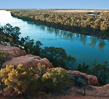 0872 The Mighty Murray 2 by DavidsArt