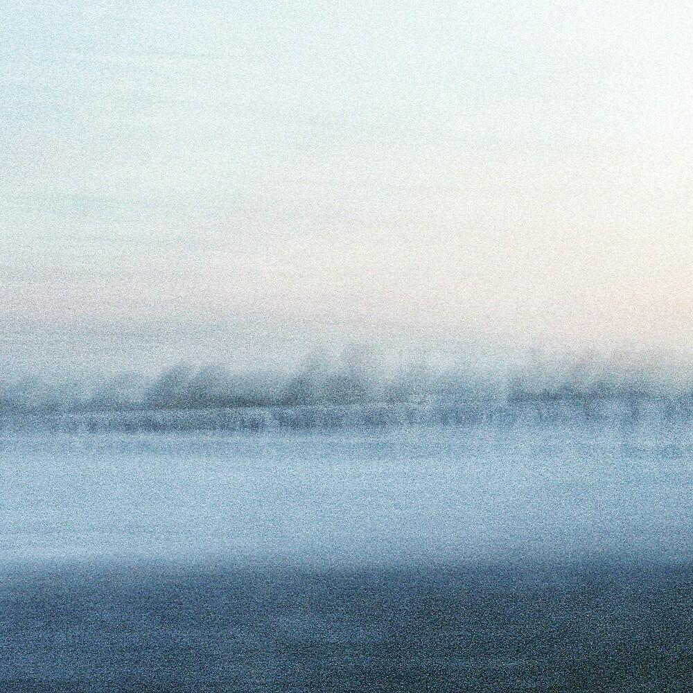 Winter light by Jenifer Wallis