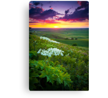 Palouse Flowers Canvas Print