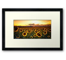 Evenings Of Augusts Past Framed Print