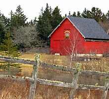 Red Cattle Barn by Patty Gross