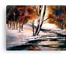 Winter's Innocence... Canvas Print