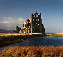 Whitby Abbey by Theresa Elvin
