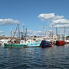 Colorful Fishing Boats in Newport Harbor by Jane Neill-Hancock