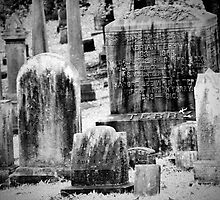 Old Gray Cemetery-1880 by FoxFire Images