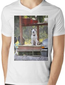 A dog day afternoon Mens V-Neck T-Shirt