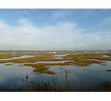 Marshes Photographic Print