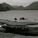 Derwent Water Shore. by Lou Wilson