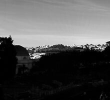 San Francisco skyline from Dolores Park part three by Confundo