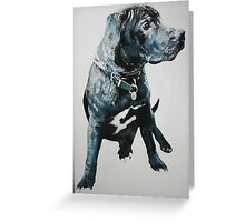Staffie Greeting Card